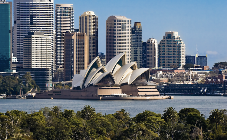 A view of trees with the Sydney Opera House and buildings in the background.